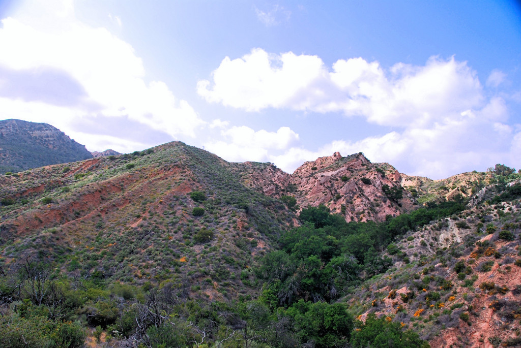 Red Rocks from the Billy Goat Trail, Whiting Ranch Wilderness Park