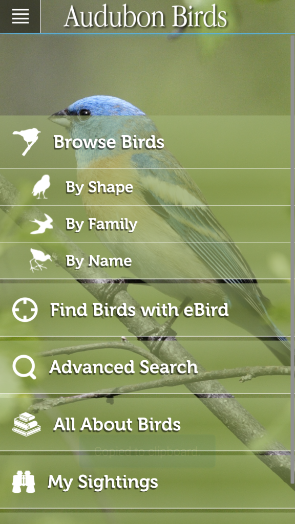 Audubon Birds Homescreen